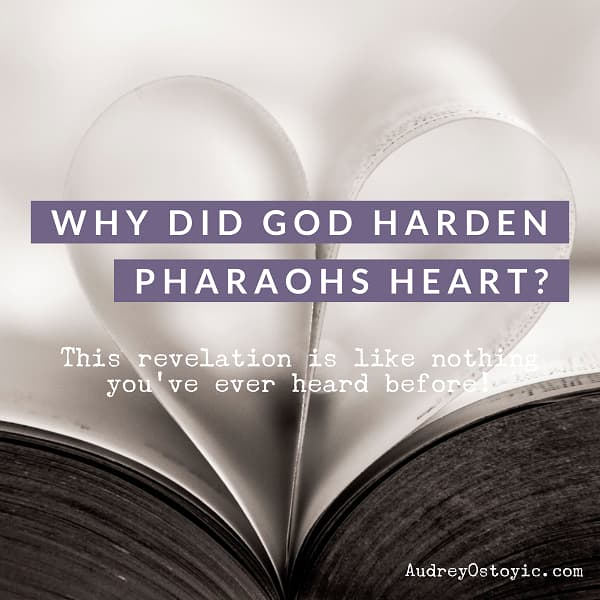 Why Did God Harden Pharaoh's Heart - The answer may surprise you